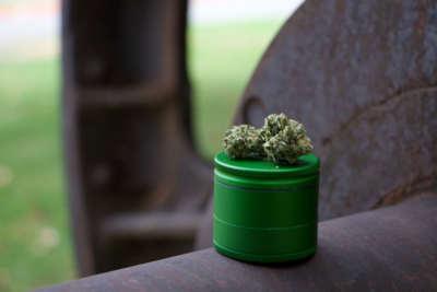 cannabis al CBD