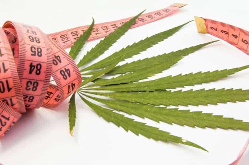 La cannabis fa dimagrire?