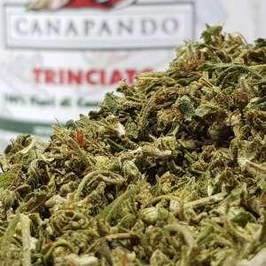 Weed_Canapando